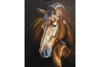 Елмазен гоблен Моят любим кон