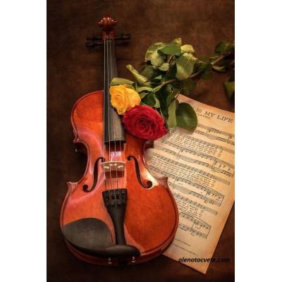 Елмазен гоблен Музика и рози