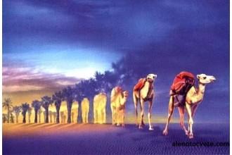 Елмазен гоблен Мираж в пустинята
