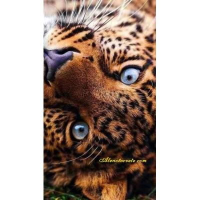 Диамантен гоблен Сини тигрови очи