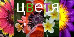 Елмазени гоблени - Цветя